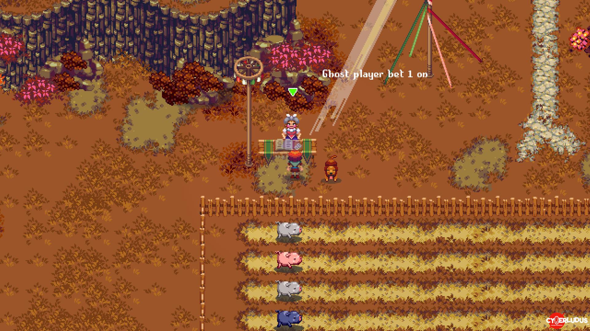 Kynseed-pig-race