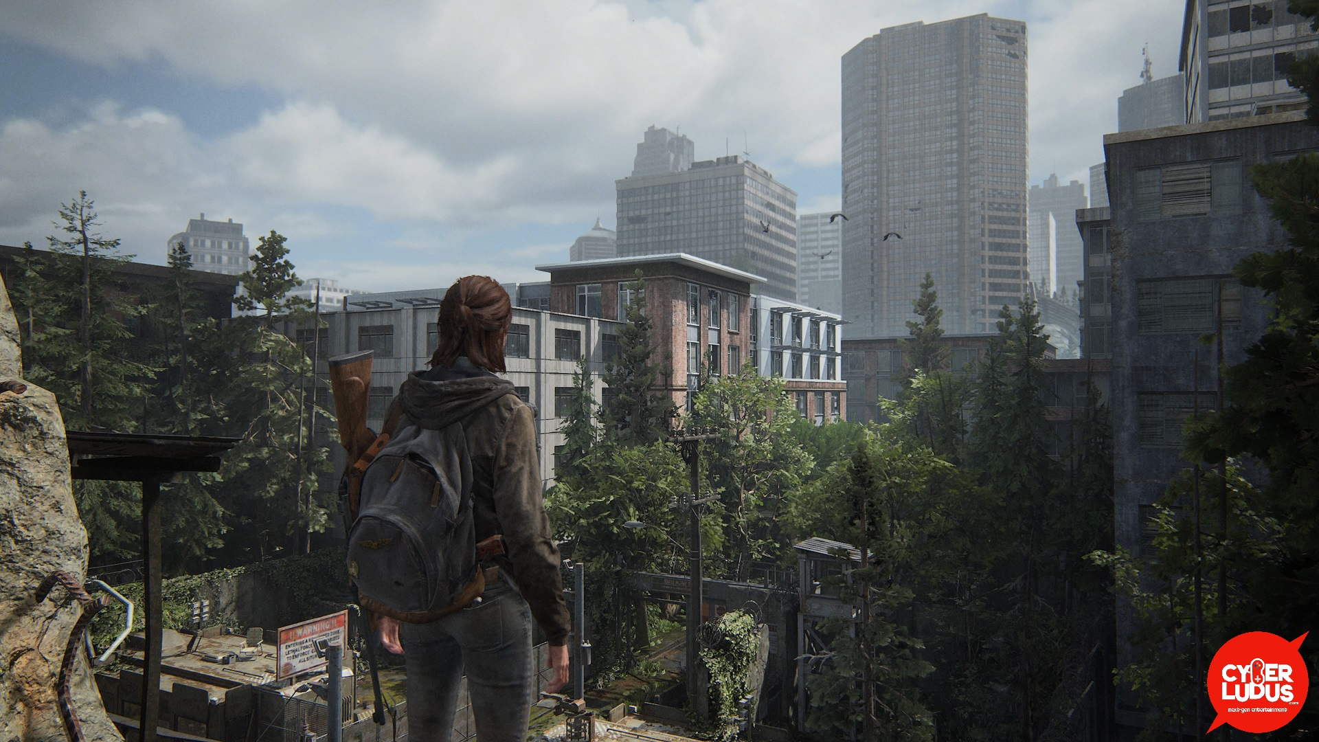 The Last of Us Seattle
