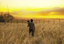 The Last of Us Part II Ellie JJ